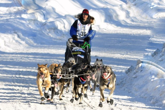07-Happy-Trails-Kennel